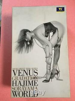 Hajime Sorayama 1/4 VOLKS Venus LADY SLAVE Figure Statue Resin cast kit